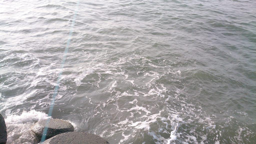 ヒラメ釣り 濁り