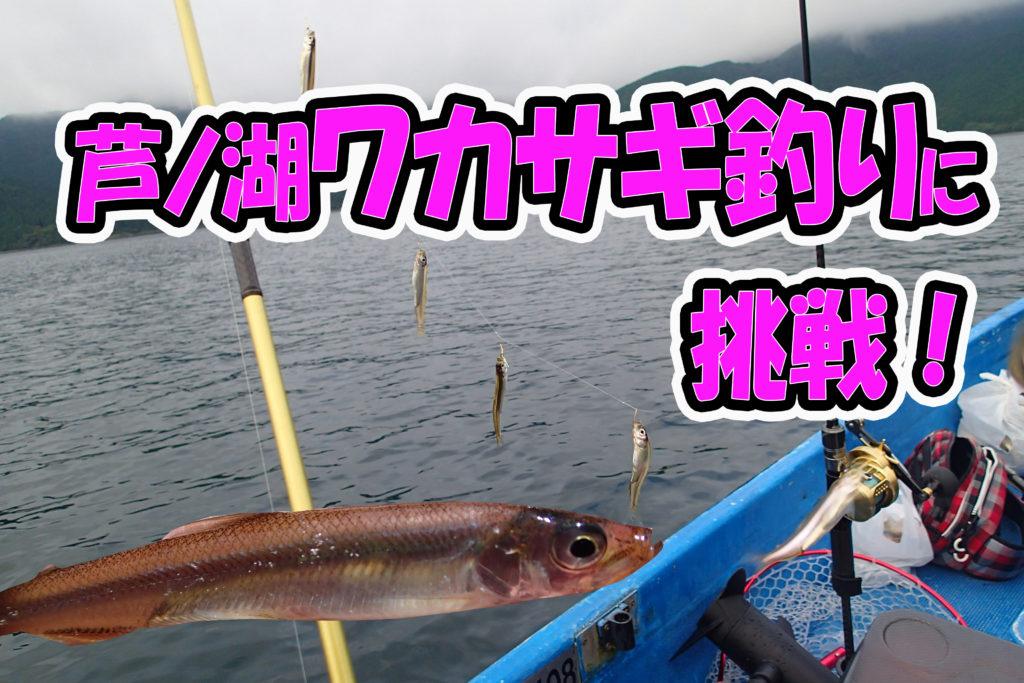 徹底解説!芦ノ湖ワカサギ釣りに必要な道具と釣り方の基本!