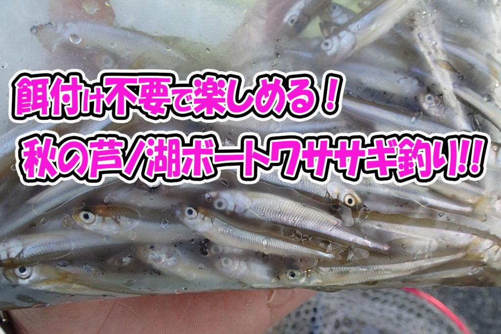 餌付け不要・食べてめちゃウマ! 秋の芦ノ湖、ボートワカサギ釣り!