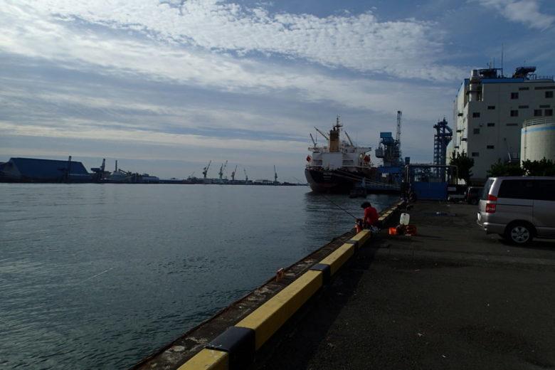 港湾 釣り場