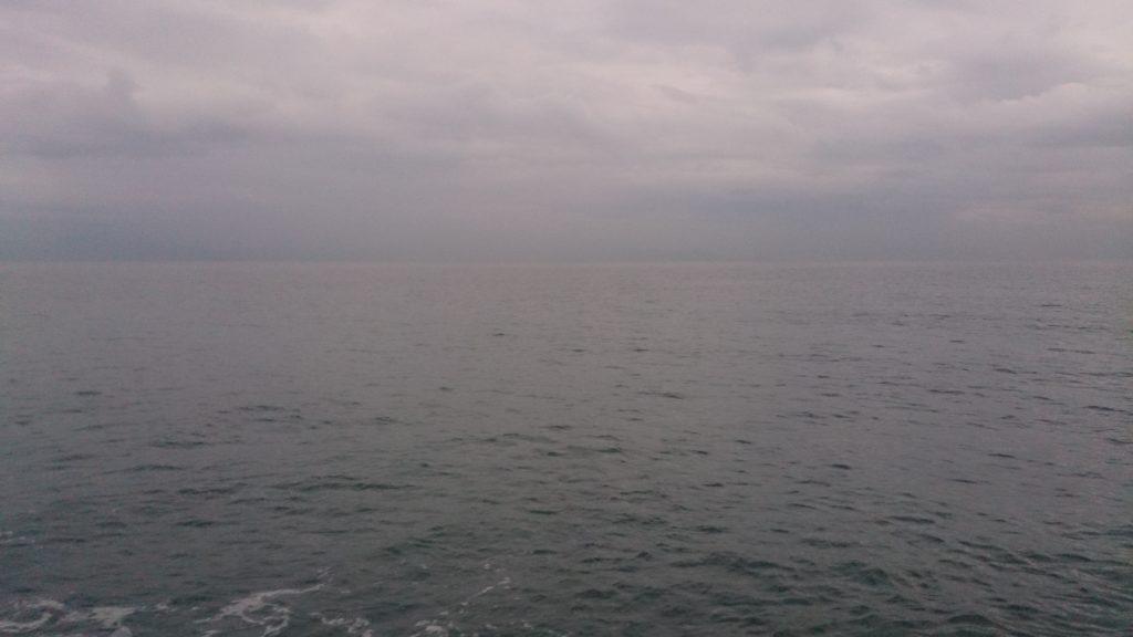 ヒラメ釣りにおける濁りの影響と考え方の要点を知る!