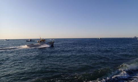 ヒラメ 釣れる場所
