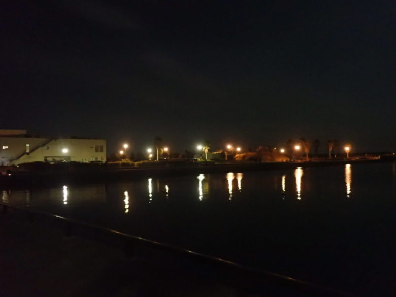 セイゴ 夜釣り