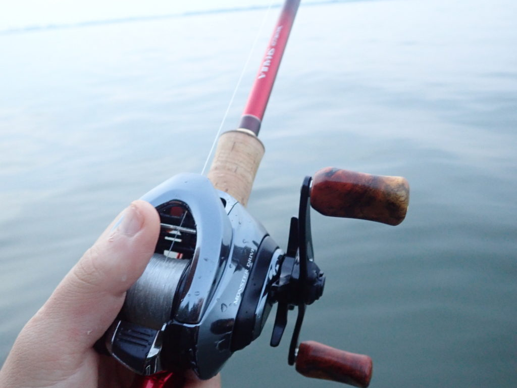 琵琶湖ウェーディング釣行 スポーン絡みの良型連発!