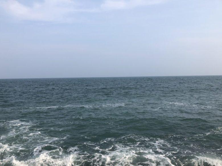 ヒラメ 釣り場