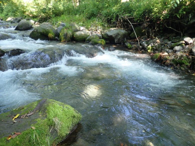 渓流 釣り場