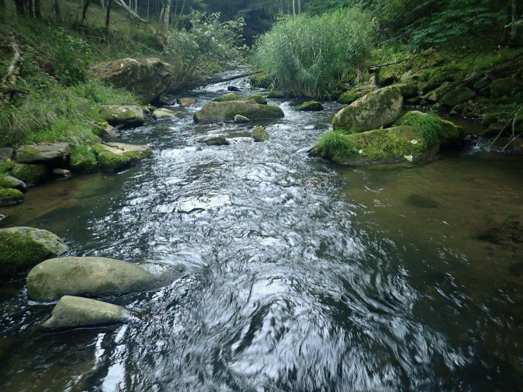 渓流 フロロカーボンライン メリット