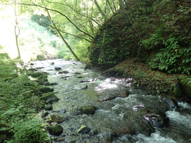 渓流 釣り場風景