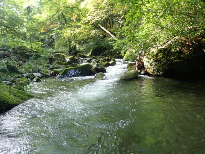 渓流 ミノー 釣り方