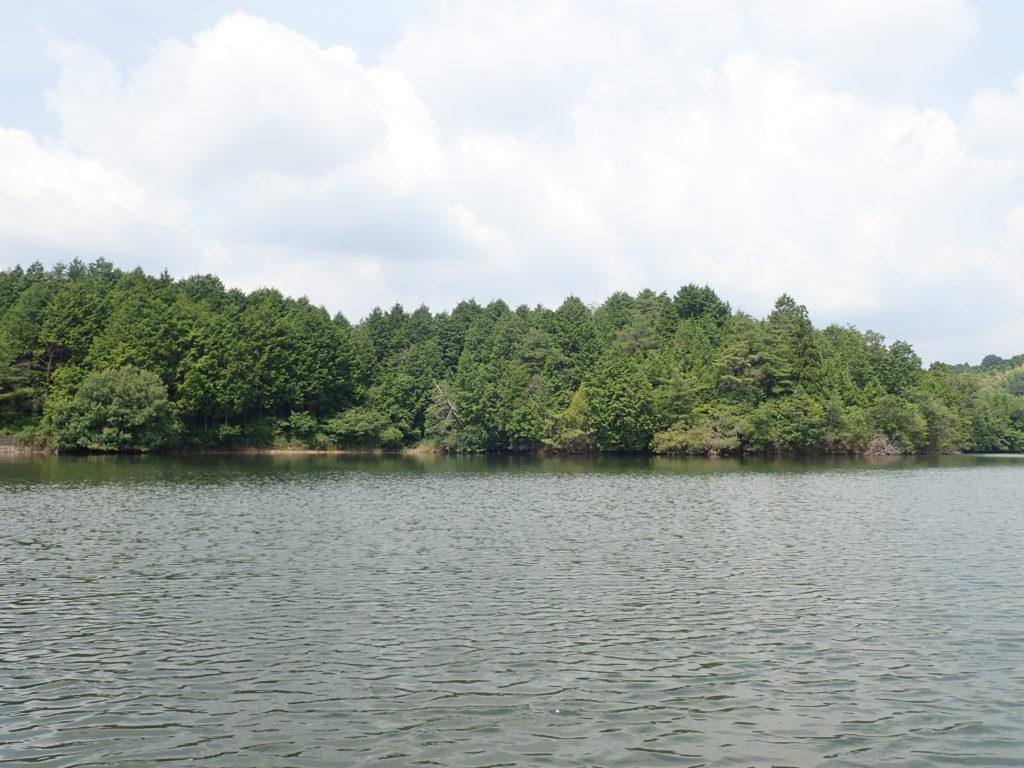 ヘビキャロを野池で使って釣果に繋げよう!