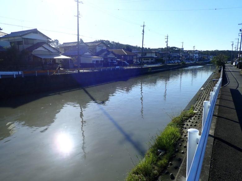 河川 ヒラメ