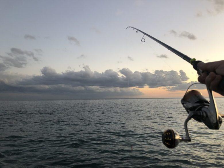 ヒラメ釣り 時間
