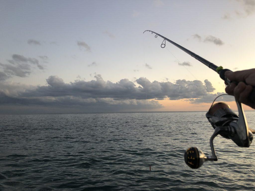 サーフヒラメ釣り 久々の釣行で良型確保も・・・・