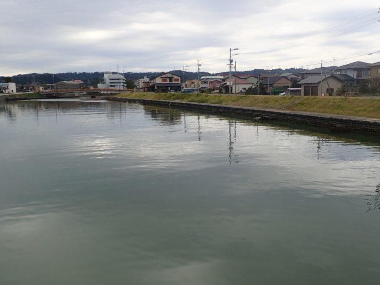 11月の萩間川でハゼ釣り。魚影は...