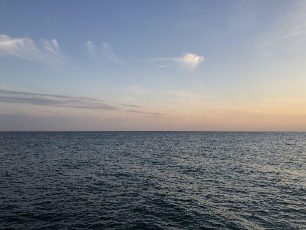 ヒラメ 海水温
