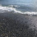静岡サーフ ヒラメ釣り