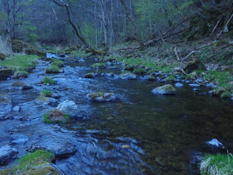 千曲川 渇水