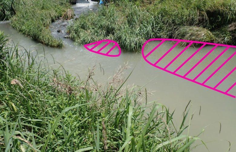 ナマズ 増水時 釣り方