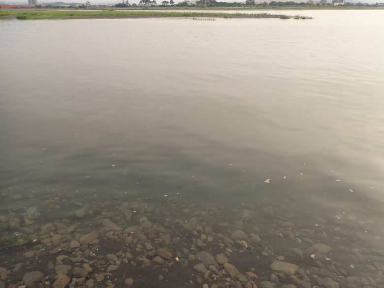 安倍川 河口 内側