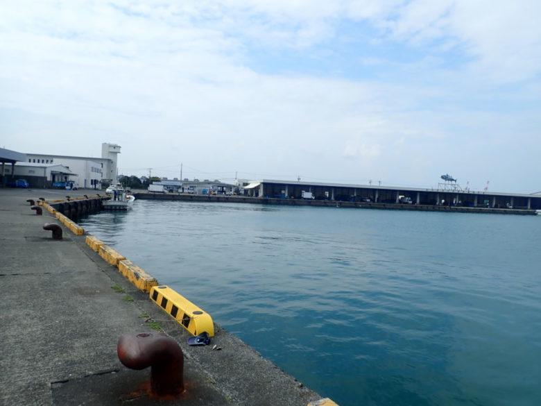 御前崎港 市場前 釣り場