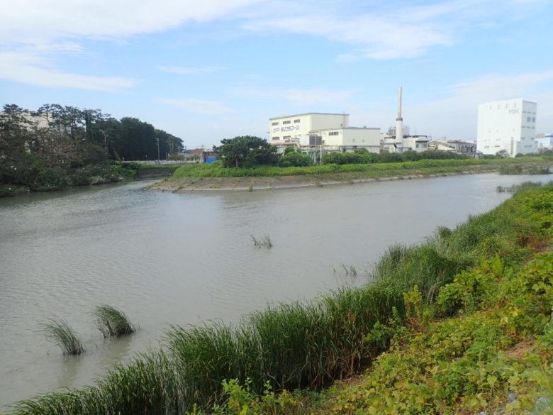 栃山川河口 水門上流