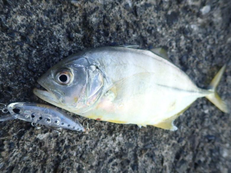 メッキ釣り ルアーの種類