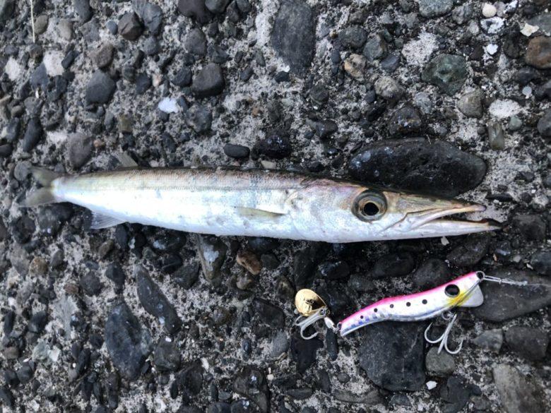 小型回遊魚 ブレード付きメタルジグ