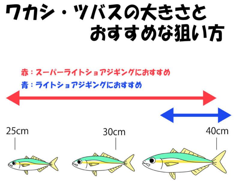 ワカシ 釣り方