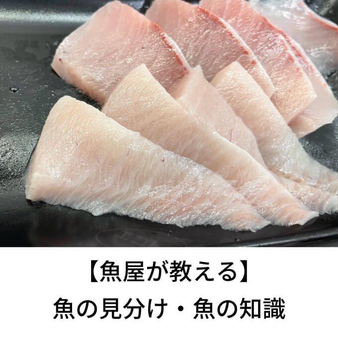 魚捌きのページサムネイル