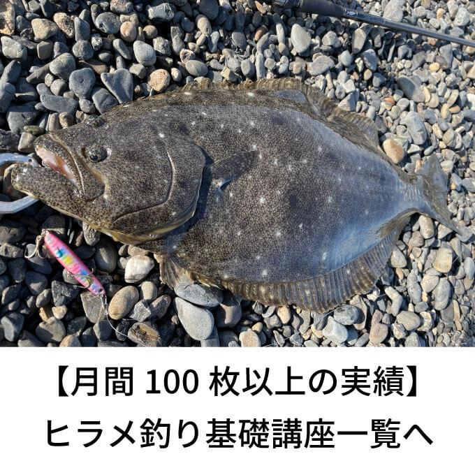 ヒラメ釣り基礎講座サムネイル