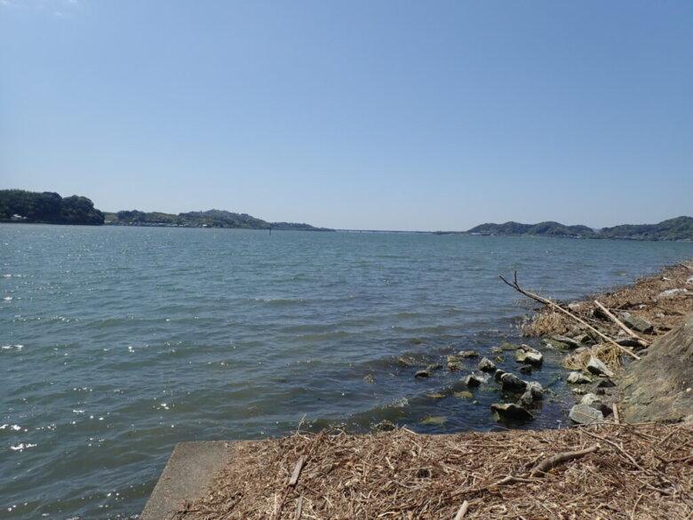 都田川 河口 西岸