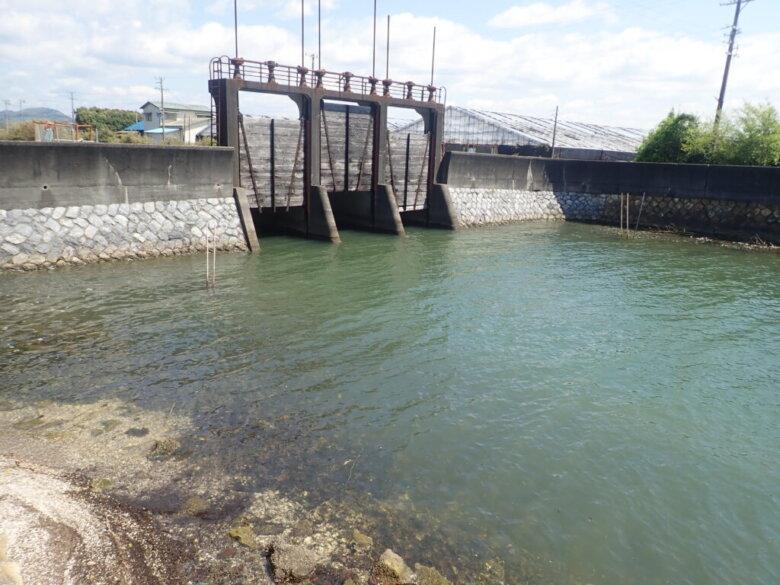 葭本川河口 釣り場