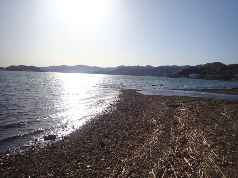 浜名湖 大崎 ポイント