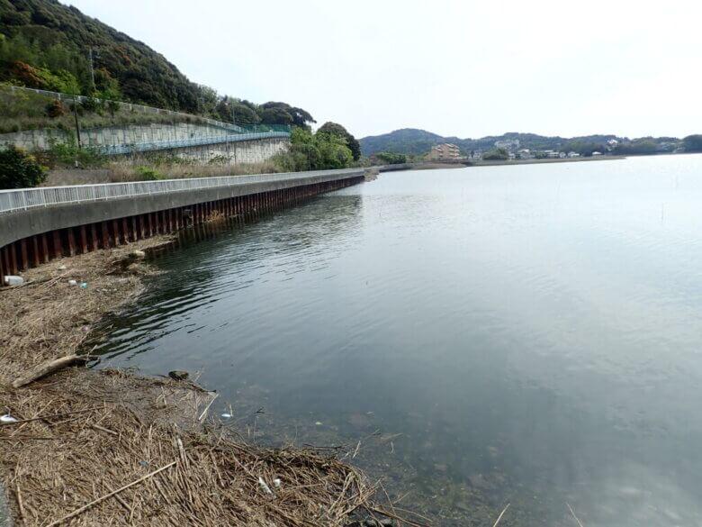 津々崎 釣り場