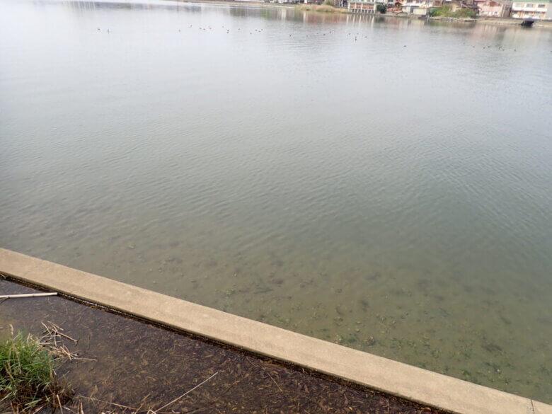 宇利山川釣り場