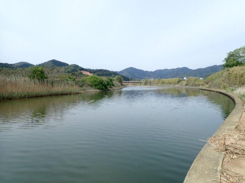 チニング ポイント 川 下流