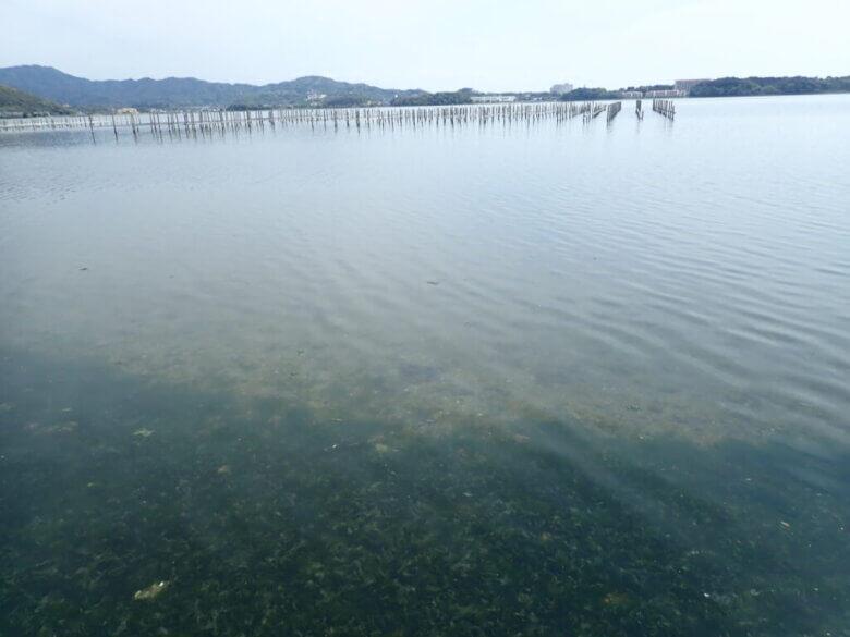 浜名湖 尾奈 釣り場