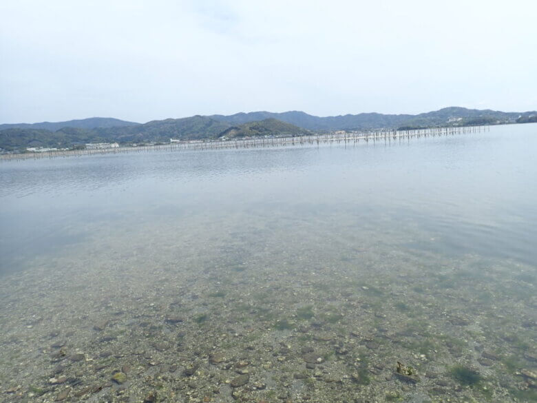 尾奈 釣り場