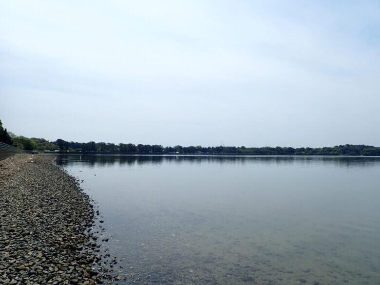 猪鼻湖 大崎 釣り場