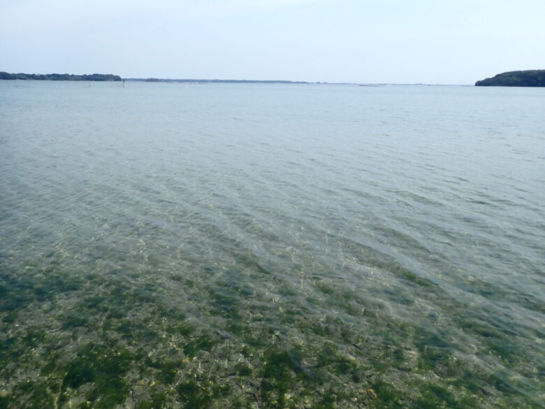 横山海岸 水深 地形