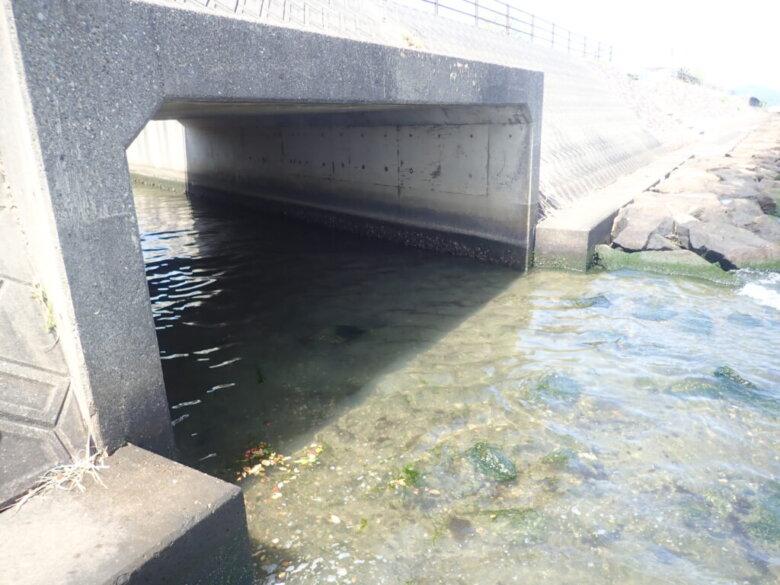 鷲津 釣り場