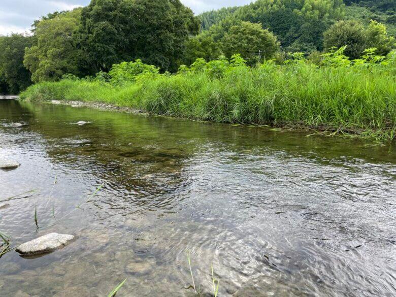 川釣り 狙う場所