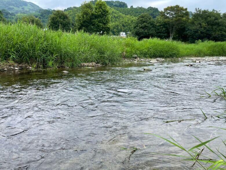川釣り 夏