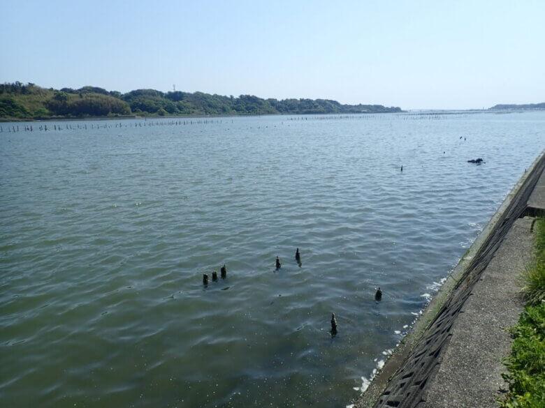 チニング 釣り場
