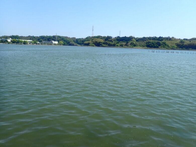 庄内湖 水質