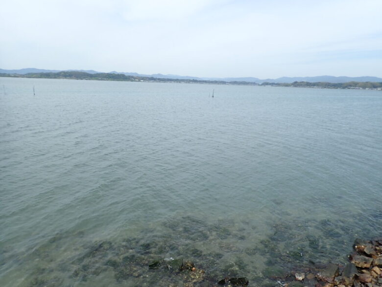 庄内湖 釣り場 水深