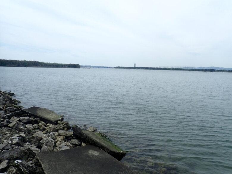 浜名湖 山崎 釣り場
