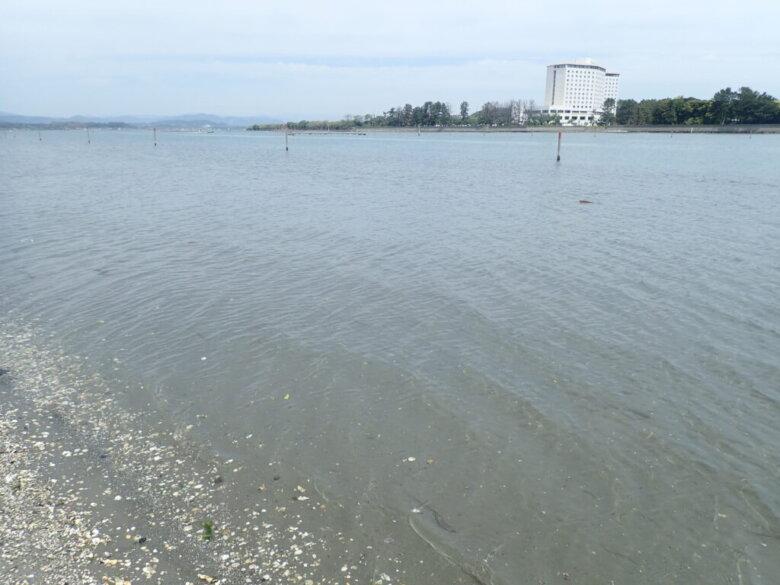 中之島 釣り場