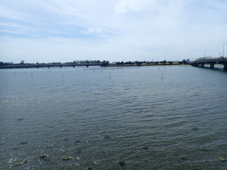 雄踏 釣り場