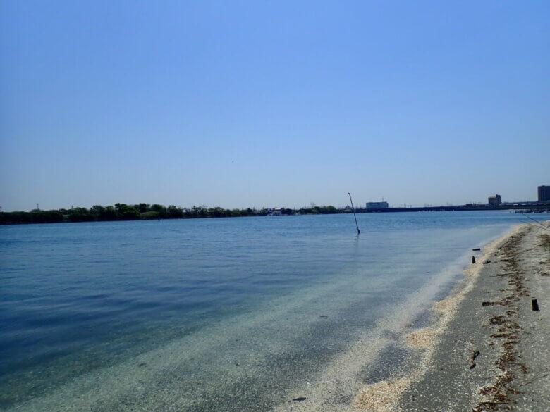 渚園 釣り場
